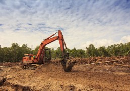 forest-encroachment-monitoring-logging